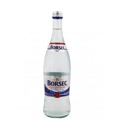 BORSEC AGUA MINERAL CON GAS 0,75/6