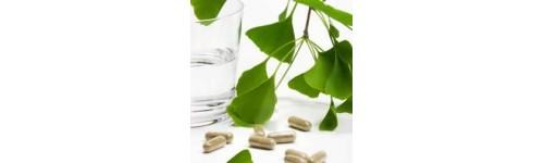 Medicamentos Herbales